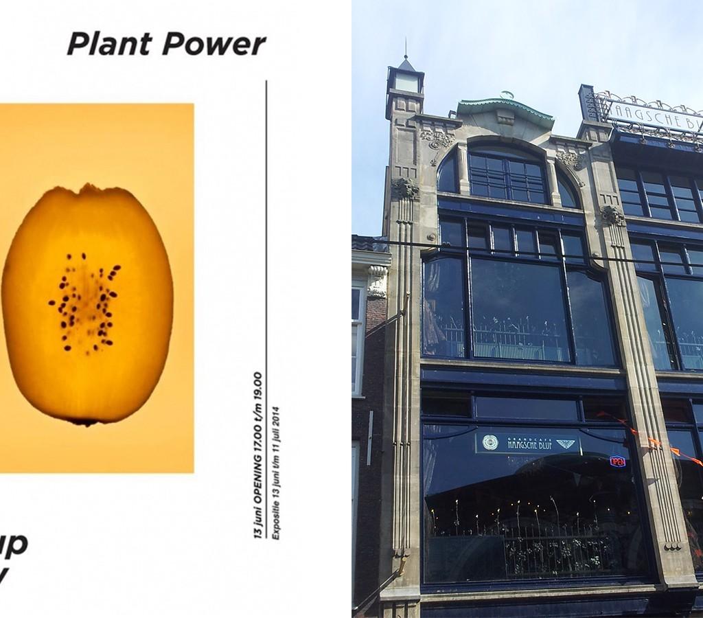 Expo Plant1
