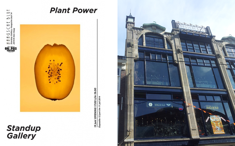 expo-plant1